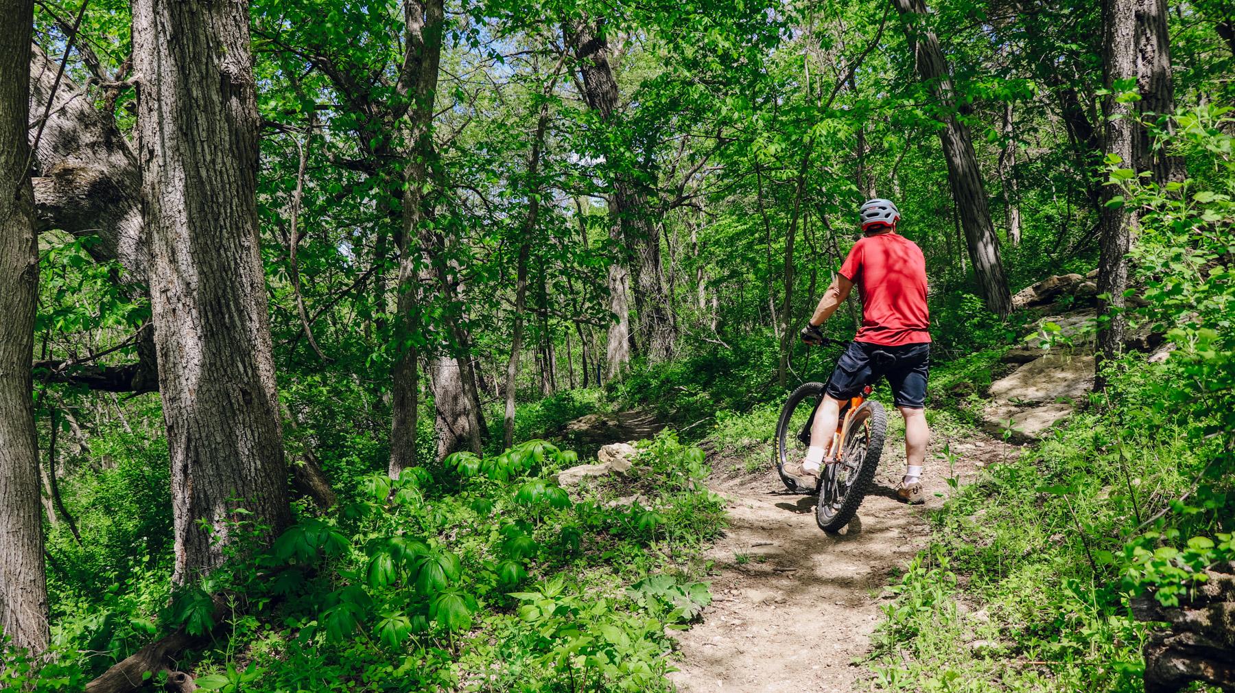 Mountain Biking IPP