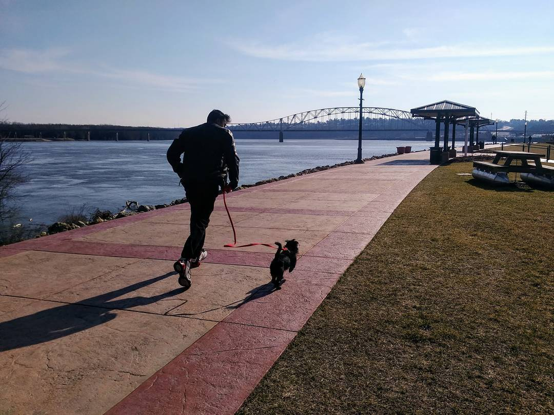 dog running river walk dubuque